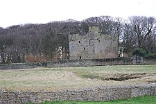 Cresswell Tower - geograph.org.uk - 1163700.jpg