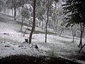 Curico, la nevada del 2007, cerro Condell (10029450574).jpg