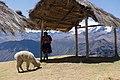 Cusco Region 2019-10-10-1.jpg
