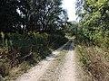 Cyklotrasa - panoramio (3).jpg