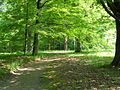 Czeski Raj, Sychrov, park zamkowyAw58.JPG