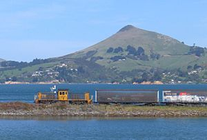 Port Chalmers Branch - DSG class shunting locomotive hauling freight towards Port Chalmers in 2008.