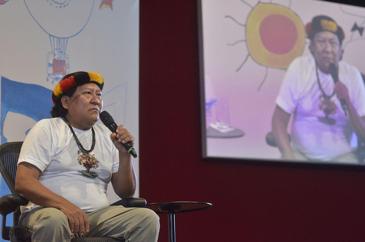 Davi Kopenawa Yanomami - Wikipedia