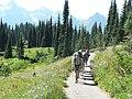 Dead Horse Creek trail (5402e37b7a12465eac2525fbc2421575).JPG