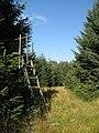 Deer seat, Outerside Plantation - geograph.org.uk - 548909.jpg