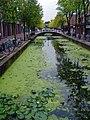 Delft - panoramio - gertrudis2010.jpg