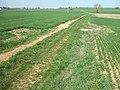 Deutergraben Kanalschächte Verrohrung zum Waldrand.jpg