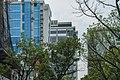 Dhaka- Approaching Banani 11 (26697366804).jpg