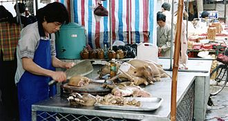 Dog meat - Dogs being butchered in Guangdong, China