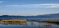 Dojran Lake 207.jpg