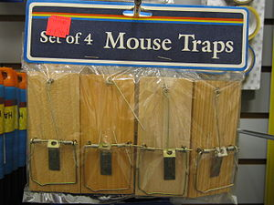 Mousetraps at a dollar store