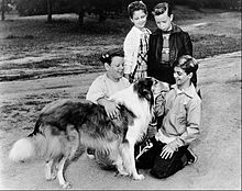 alt=Description de l'image Donald Keeler, Gay Goodwin, Lee Erickson, and Tommy Rettig - Lassie and Friends.jpg.