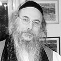 Dov Laimon.JPG