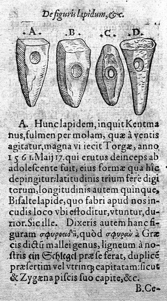 File:Drawing of stone axe heads, pierced for hafting. Wellcome M0016328.jpg