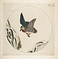 Duck Flying with Snow Covered Branches (Decoration for a Plate) MET DP814348.jpg