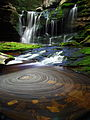 Elakala Waterfalls pub3 - West Virginia - ForestWander.jpg