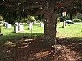 Elmira, New York (Woodlawn Cemetery) (1881900989).jpg