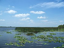 Emeralda Marsh-Island looking west01.jpg