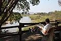 Enjoying the view at Skukuza (10900857354).jpg