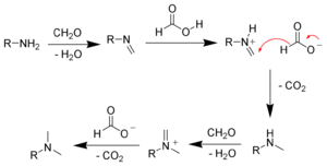 Eschweiler–Clarke reaction - The mechanism of the Eschweiler–Clark reaction