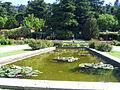 Estanque, rosaleda del parque del Oeste.jpg