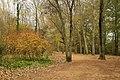 Estany de Banyoles - panoramio.jpg