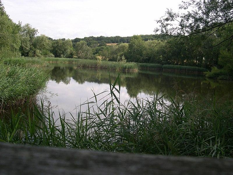 Vue de l'Étang de Haute-Jarrie