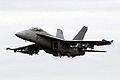 F-18 Super Hornet (5144501660).jpg