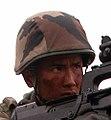 FAMAS Infanterie 2REI (cropped).jpg