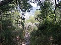 Fale - Capo Mimosa - 310709 - 29.jpg