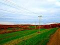 Fall Colors - panoramio (8).jpg
