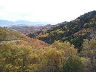 Butterfield Canyon (Utah)