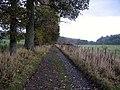 Farm road between Dacre and Dalemain - geograph.org.uk - 1578635.jpg