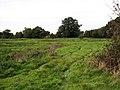 Farm track - geograph.org.uk - 1012384.jpg