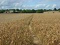 Farmland, Prestwood - geograph.org.uk - 935915.jpg