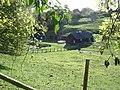 Farmyard in Tollard Royal - geograph.org.uk - 266154.jpg
