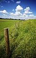 Fence - panoramio (8).jpg