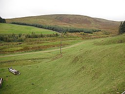 Field, Baddinsgill - geograph.org.uk - 1509386.jpg