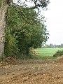 Field track off Gorse Lane, near Croxton Kerrial - geograph.org.uk - 69359.jpg