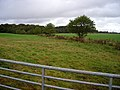 Fields Near Hitchill - geograph.org.uk - 565048.jpg