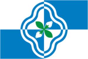 Rodnikovsky District - Image: Flag of Rodnikovsky rayon (Ivanovo oblast)