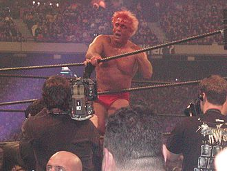 Ric Flair - A bloody Flair at WrestleMania X8