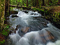 Flickr - Nicholas T - Upstream.jpg
