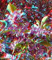 Flickr - jimf0390 - JimF 04-27-10-0038a crab apple blossoms.jpg