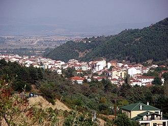Florina (regional unit) - Florina