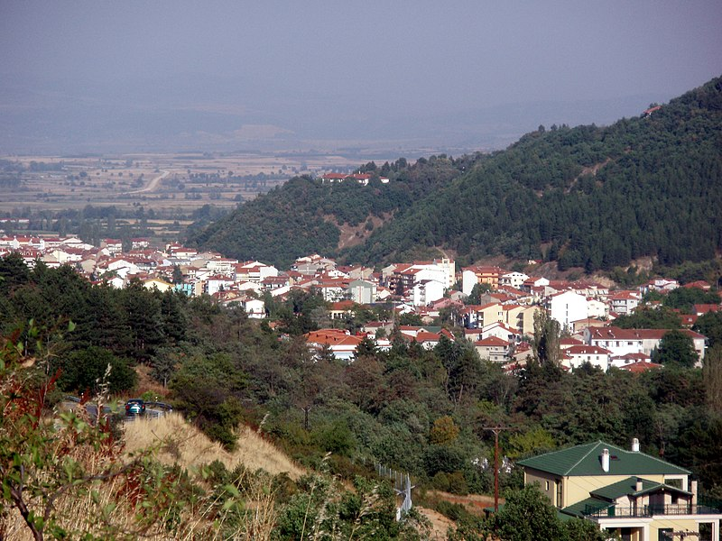 800px-Florina_%28city%29%2C_Florina_prefecture%2C_Greece_-_From_the_Northwest_%28National_Road_2_to_Vigla%29_-_02