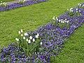 Flowers in Sankt Annæ Plads - Copenhagen - DSC07771.JPG