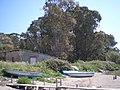 Foce del fiume Sele5 foto di peppe pepe Angri - panoramio.jpg