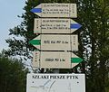 Fojutowo, Bory Tucholskie (trails) (2).JPG
