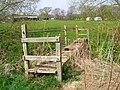 Footbridge, New House Farm - geograph.org.uk - 400203.jpg